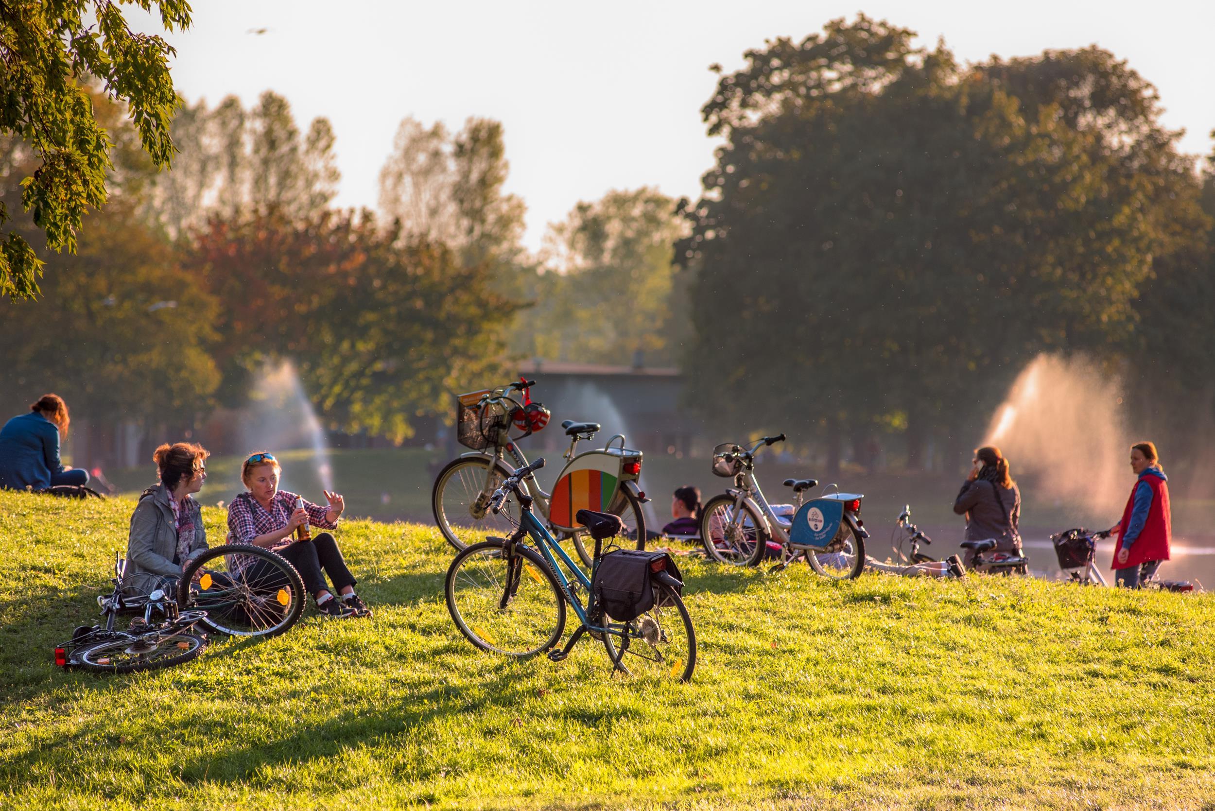 Rowery w parku (Copy)